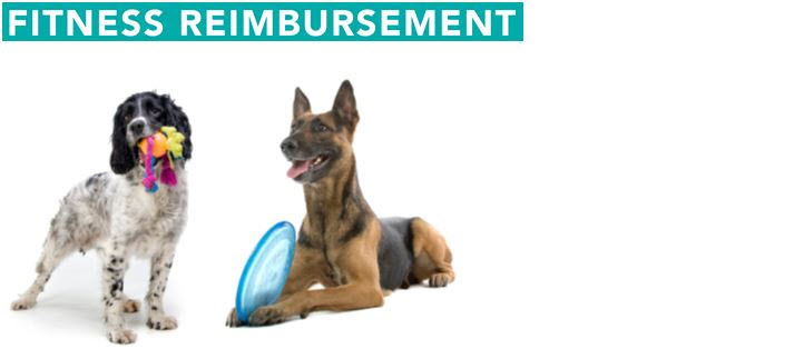 Fitness Reimbursement Image