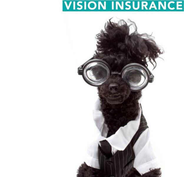 Vision Insurance Image
